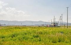 Buvusių evakuacijos zonų teritorijų atkūrimas Fukušimos prefektūroje: kraštovaizdis / Recovery of former evacuation zone areas at Fukushima prefecture: landscape