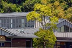 Naujai pastatytas namas Odakoje. Cunamis nušlavė daugelį Odakos namų, vietoj jų buvo pastatyti nauji / A newly built house in Odaka. Many houses in Odaka were swept away by the tsunami and new ones have been rebuilt