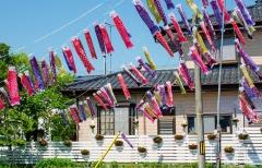 Namas Odakoje. Odaka įsikūrusi mažiau nei 20 km spinduliu nuo Daiichi AE ir buvo priskirta evakuacijos įsakymo teritorijai. 2016 m. pavasarį evakuacijos tvarka buvo panaikinta / House in Odaka. Odaka locates within 20 km radius of Daiichi NPP and has been designated as evacuation order area. Only in 2016 spring the evacuation order was lifted