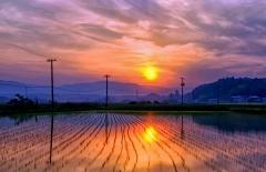 Saulėlydis Fukušimoje / Sunset in Fukushima