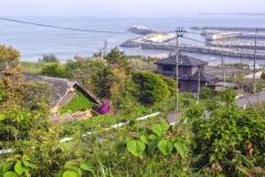 Kraštovaizis nuo netoli Tomioka-Town esančio vynuogyno / Landscape from the Vineyard in To-mioka-Town area