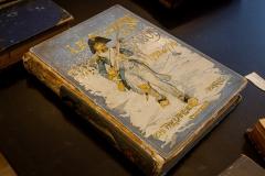 Knygų lobis bibliotekos seife