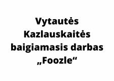 """Vytautės Kazlauskaitės baigiamasis darbas """"Foozle"""""""