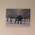 palemonas fotoklubas